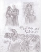 Bellatrix and Voldemort by nekkuu