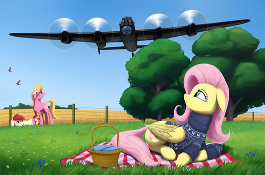 Training Flights by MrScroup