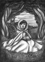 The Little Princess by redheaded-step-child