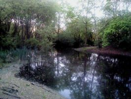 peaceful pond by missy70