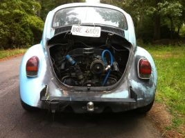 Pic of my bug 5 by NekoVWMike