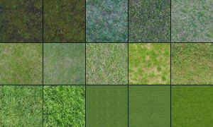 Grass Textures by Akinuri