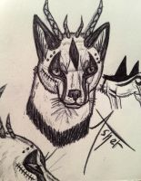 Asher White sketches by HaloneWolf