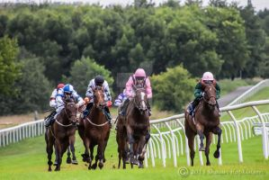 The final three furlongs and it's anyone's race by KrystalsGrandpa