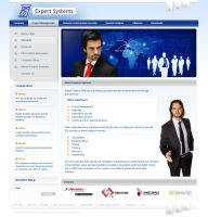Expert Systems Web Interface by webgraphix