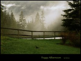 Foggy Afternoon by Violet-Kleinert