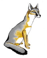 Swift fox first color second by Chromone