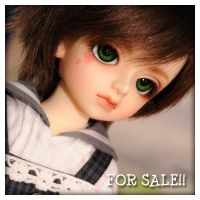 FOR SALE Volks YoSD Piccolo 2nd ver FREE EMS by fransyung
