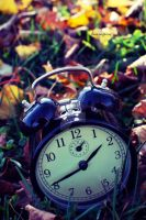 Time Flies by love-in-focus-Photo