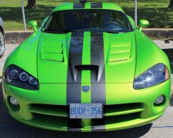 Viper by boogster11