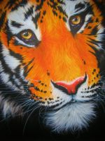 Tiger Airbrushing by numbthumbs