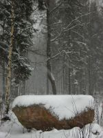 Altar of Winter by Photopathica