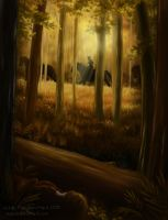 The Boundary Forest by Saracia