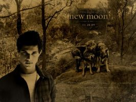 New Moon Poster Wolf Pack by freeMaryJane