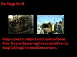 Ninjago Fact by TombRaiderNinja