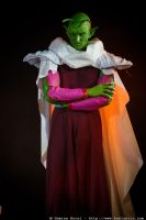 piccolo ssedd by Heartofdevil-cosplay