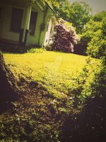 Grass valley. by CindyLouWhoXox