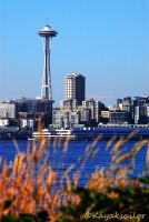 Seattle Space Needle by kayaksailor