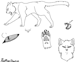 Cat REF - BASE by RedMoonStudioz