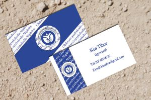 Business Card 4 for a Foundation by KungfuHamster