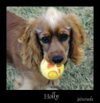 Holly by jadeoracle