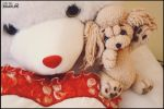 toy poodle by SHAKUMl