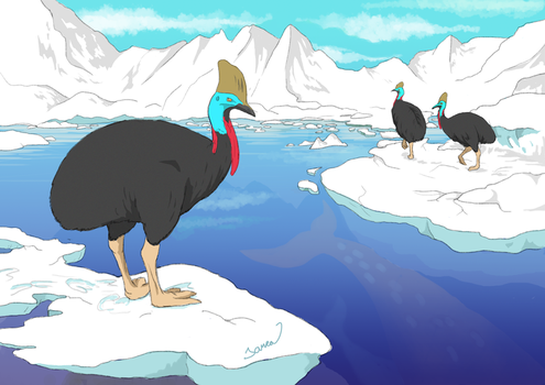 Typical arctic birds by Janea1