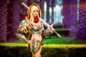 WoW Paladin by andyrae
