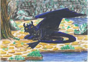 Toothless and his mother by Mariya14