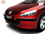 Peugeot 307 by mdodhy