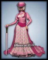 Prim and Pink-Figure Stock by shd-stock