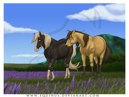 Love Is Walking Together by Equinus