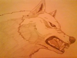Wolf's Rain : Kiba Growling by Inuyasha-vs-Sess