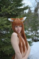 Horo The Wise by cloudstrife597