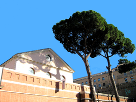 Roman Trees Near Wall and Building w/o Street lamp by JJPoatree