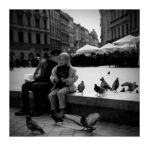 Feeding the pigeons. by Jack070