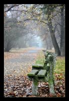 Autumn sitting by tomsumartin