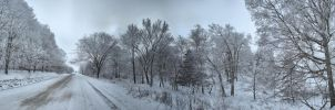 Frosted Woods Panorama HDR by Anachronist84