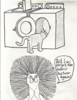 Lori's cat in the dryer by Buhla