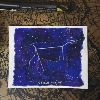 Canis major by Folklore-A