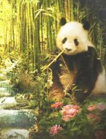 Panda by MariLucia