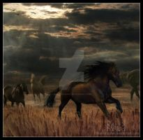 Cavalls al galop by EmberRoseArt