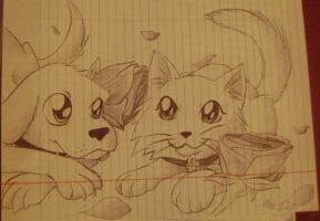 Dog, Cat and Rose by Axxidous