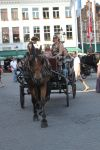 Horse and Cart 4 by Tasastock