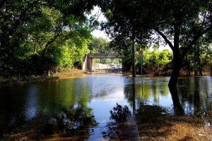 Flood of 2008 - Rocky Shore Dr by moonlightrose44