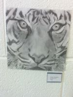 Tiger by ebs1996