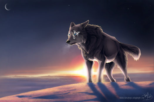 Long Way by WolfRoad