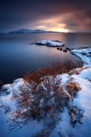 Thingvellir by erezmarom