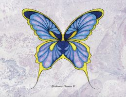 butterfly by yosheanne