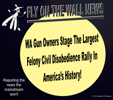 Thousands of WA Gun Owners Become Felons! by IAmTheUnison